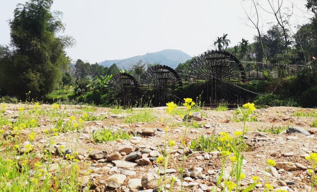 Gìn giữ văn hóa làng quê
