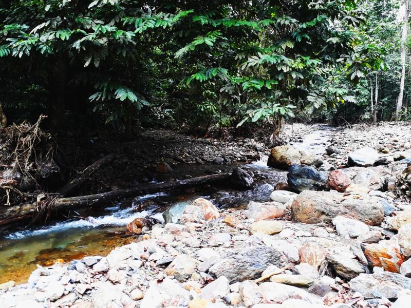 Những dòng nước trong xanh, trắng xóa chảy róc rách rất dịu em và hiền hòa trong tiết trời se lanh của tháng 10
