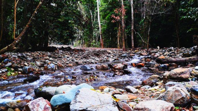 Vẻ đẹp của Vườn quốc gia Xuân Sơn
