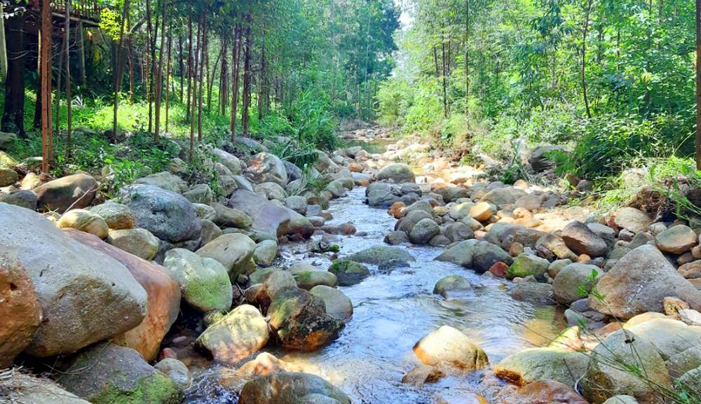 Suối nước tự nhiên trong vắt trên đường khám phá các ngọn thác trong khu du lịch
