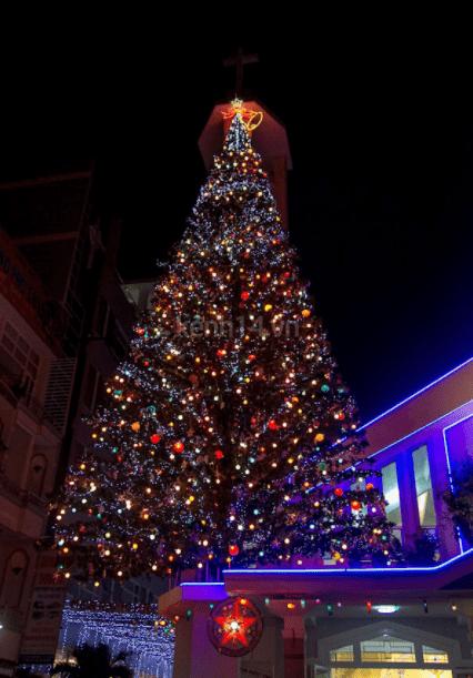 Cây thông Noel khổng lồ được đặt trên nóc nhà thờ An Nhơn (Ảnh sưu tầm)