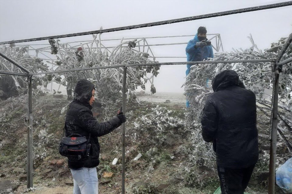 Nhiều du khách đổ về Mẫu Sơn chiêm ngưỡng vẻ đẹp băng tuyết xuất hiện song không thể chịu nổi cái lạnh dưới 0 độ C. Trên quần áo họ, những hạt mưa sớm đóng lại thành băng.
