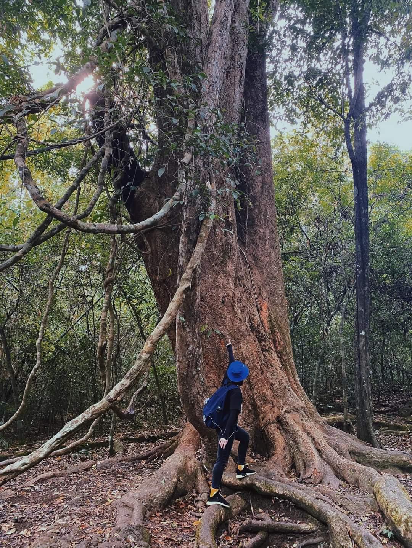 Du lịch Vườn quốc gia Cát Tiên