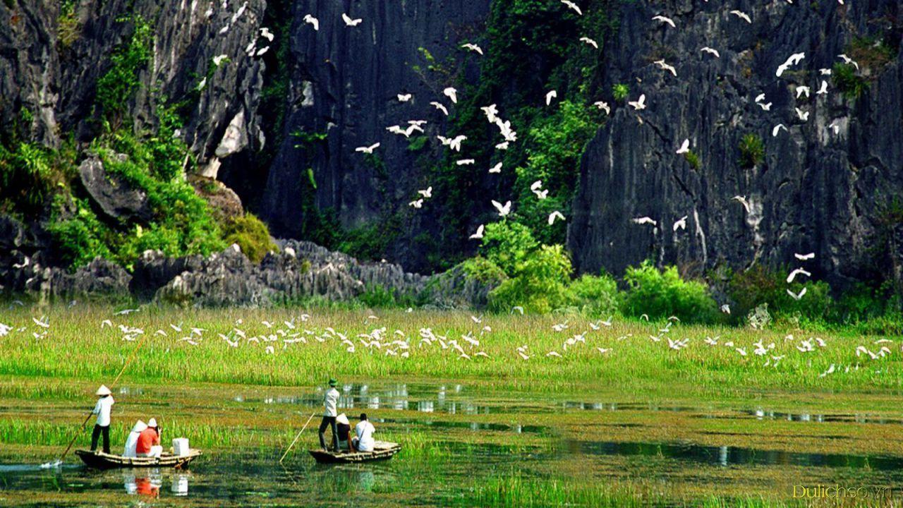 Thung Nham Ninh Bình thơ mộng, tươi đẹp